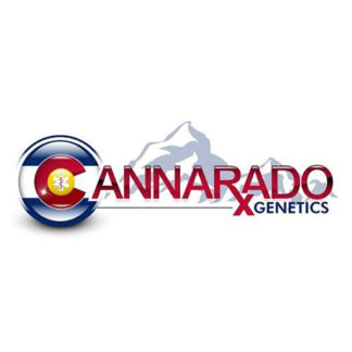 The Seed Connection - Cannarado Seeds