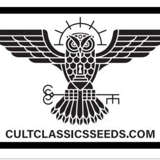 Cult Classic Seeds